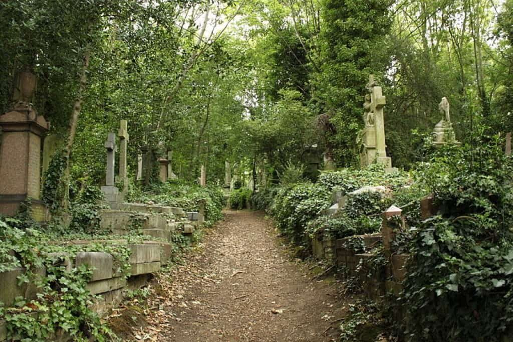A picture of the Highgate cemetery (East). Image credit: wikipedia.